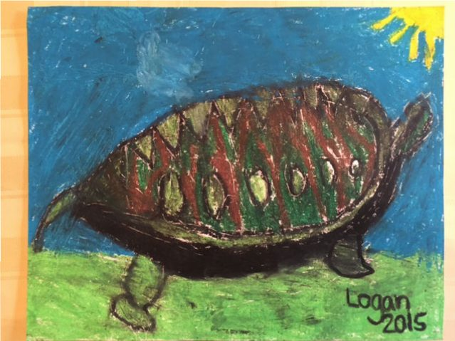 Sunny The Silver Beach Turtle by Logan B.